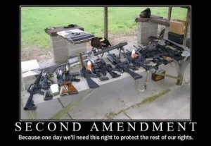 second amendment to protect the rest of our rights